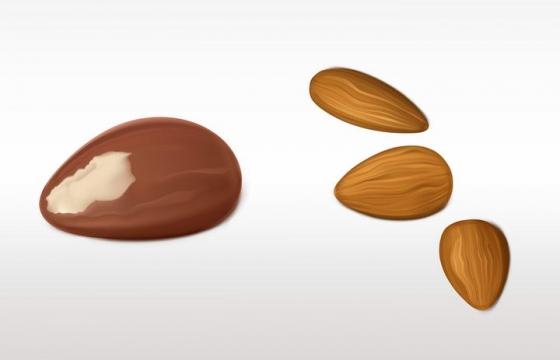 几颗杏仁坚果图片免抠素材