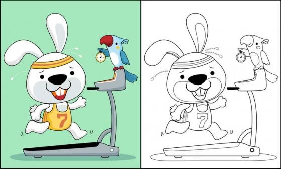 在跑步机上的卡通兔子和鹦鹉简笔画图片免抠素材