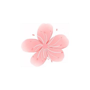 手绘风格粉红色的桃花花朵png图片免抠素材