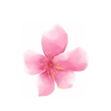 水彩画风格的粉色桃花花朵png图片免抠素材