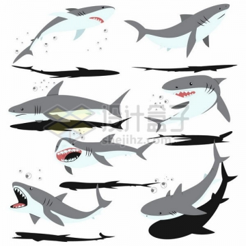 各种带阴影的卡通鲨鱼png图片免抠矢量素材