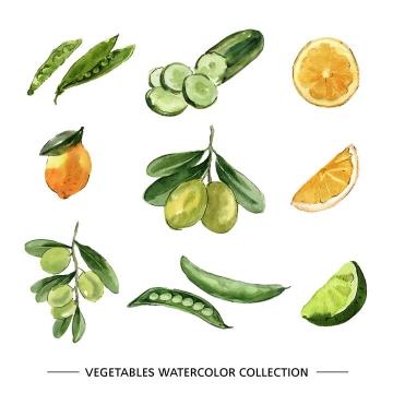水彩画风格豌豆黄瓜柠檬橄榄等蔬菜图片免抠矢量素材