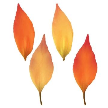 4款黄色红色的秋天树叶枯叶图片免抠矢量素材