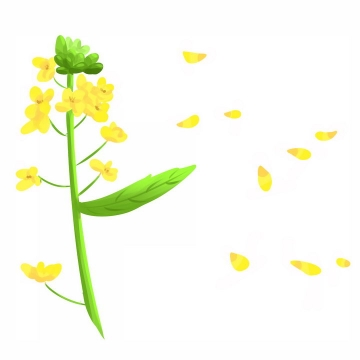 手绘风格飘落的油菜花花瓣png图片免抠素材