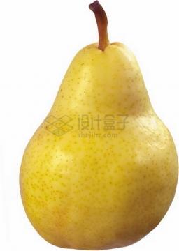 一颗完整的梨子库尔勒香梨png图片素材
