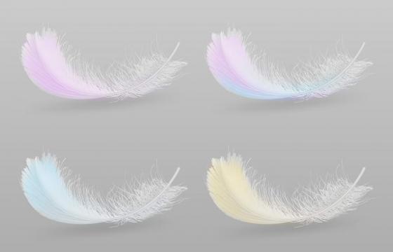 四款彩色风格的精细羽毛图片免抠素材