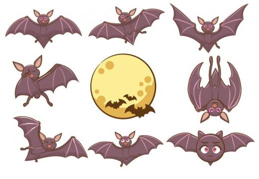 各种可爱的卡通蝙蝠野生动物图片免抠矢量图素材
