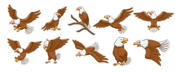 10款卡通风格白头鹰白头海雕图片免抠矢量图素材