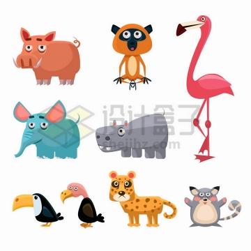 卡通野猪猴子火烈鸟大象犀牛巨嘴鸟秃鹫花豹等非洲野生动物png图片免抠矢量素材