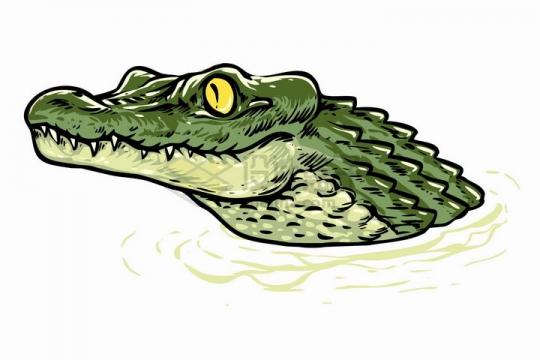 手绘风格露出水面的鳄鱼头png图片免抠矢量素材