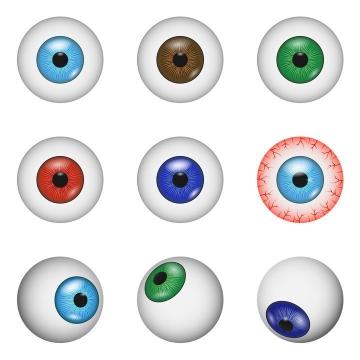 9款不同的眼睛眼球人体器官免抠矢量图片素材