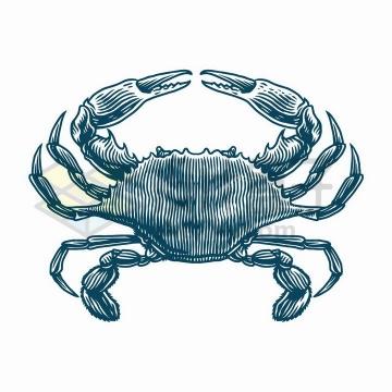 线条手绘风格梭子蟹螃蟹美味海鲜png图片免抠矢量素材
