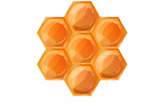 水晶风格六边形蜂巢图案免抠矢量图片素材