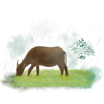 在雨中吃草的老牛手绘插画风格24节气之谷雨节气图片免抠素材