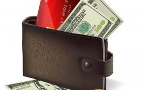 打开的钱包钱夹子银行卡美元纸币金币免抠矢量图片素材