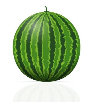 一颗绿色的大西瓜水果免抠矢量图片素材