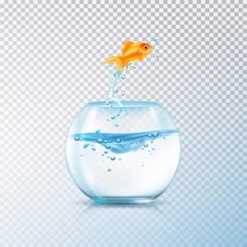 有一只金鱼跳出的球形玻璃鱼缸图片免抠素材