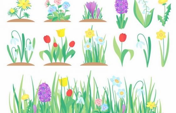 春天里的花朵花园中的郁金香等鲜花花卉png图片免抠eps矢量素材