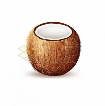 切开的椰子661504png图片素材