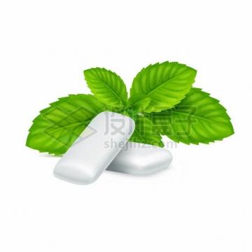 绿色薄荷叶和薄荷味的口香糖470646png图片素材