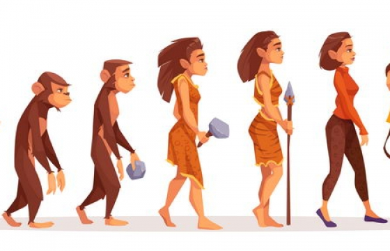 从猩猩进化成女人的人类进化过程图片免抠矢量图素材