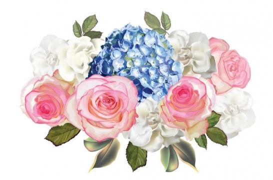 粉色月季花和紫罗兰花朵花卉鲜花图片免抠矢量素材