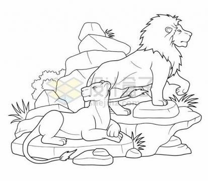 石山上的狮子雄狮线条插画简笔画png图片素材