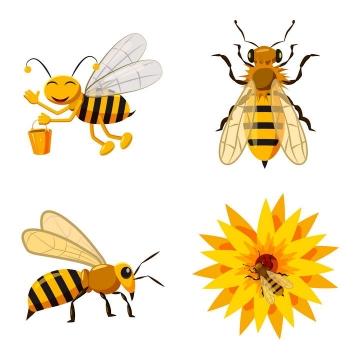 四款卡通风格采蜜的小蜜蜂免抠矢量图片素材