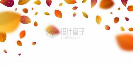 红色黄色的秋天叶子树叶落叶飘叶装饰546554png矢量图片素材