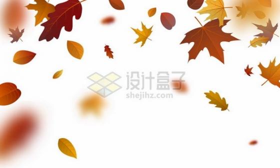 红色黄色的秋天叶子枫叶树叶落叶飘叶装饰863788png矢量图片素材