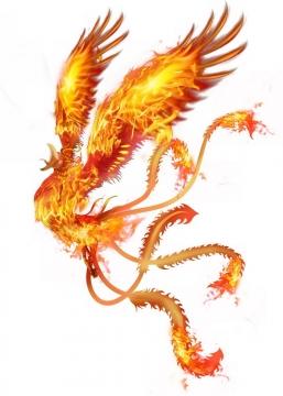 燃烧着火焰的火凤凰不死鸟png图片免抠素材