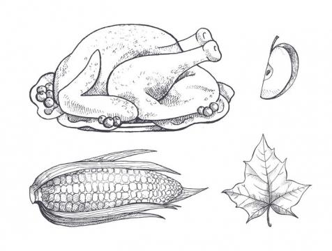 手绘素描风格烧鸡火鸡苹果玉米等美食和枫叶图片免抠矢量素材