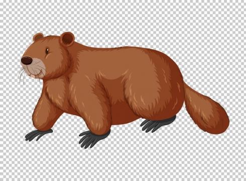 可爱的卡通河狸野生动物图片免抠矢量素材