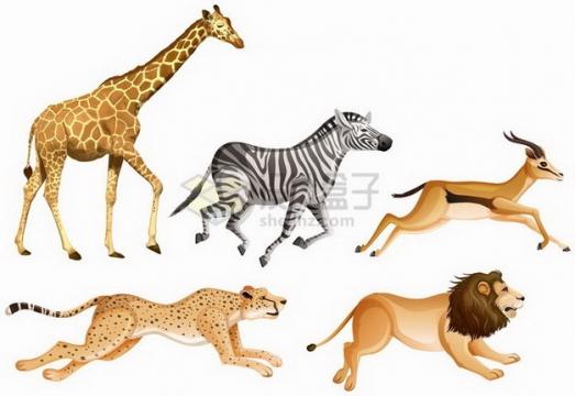 长颈鹿斑马羚羊猎豹狮子等非洲大草原野生动物png图片免抠矢量素材