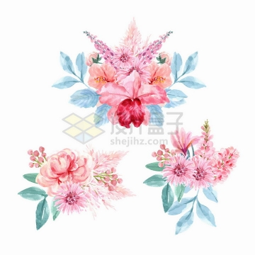 三种牡丹花合欢花蟹爪兰等粉色花朵鲜花水彩画花卉png图片免抠矢量素材