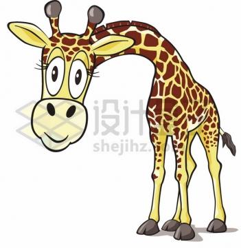 呆萌的卡通长颈鹿低头看你png图片素材