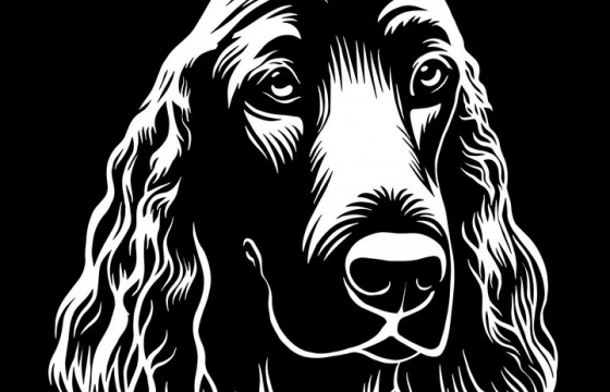 黑白画风格宠物狗狗品种金毛犬图片免抠素材