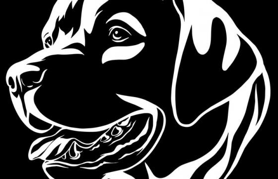 黑白画风格宠物狗狗品种罗纳威犬图片免抠素材
