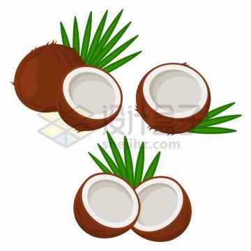 打开的椰子热带水果png图片免抠矢量素材