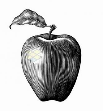 带叶子的红蛇果苹果美味水果手绘素描插画png图片免抠矢量素材