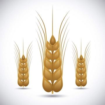 小麦麦穗图案免抠矢量图片素材