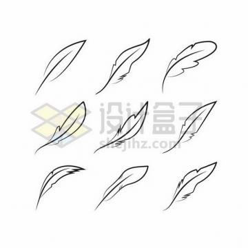 9款优雅线条羽毛图案png图片素材