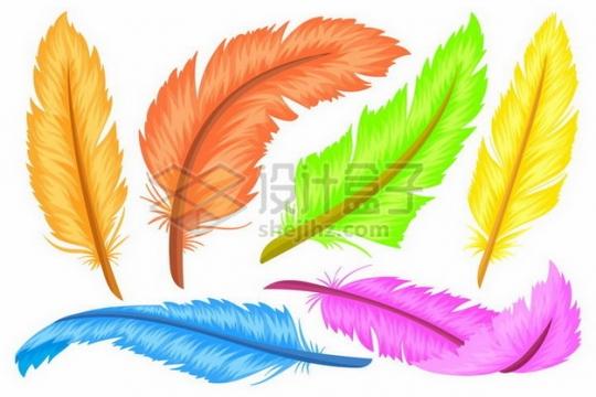 黄色橙色绿色红色蓝色粉色彩色羽毛png图片素材