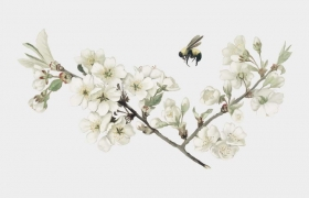 唯美水彩画风格飞在花丛中的小蜜蜂免抠矢量图片素材