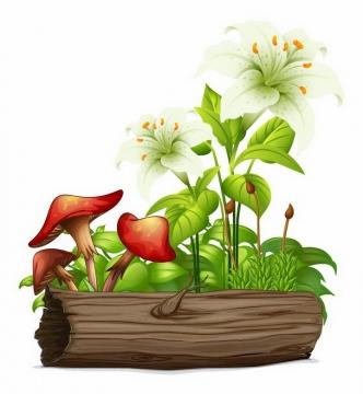 树干上长满了蘑菇绿叶和白色百合花免抠png图片矢量图素材