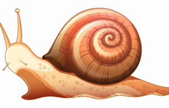 一只褐色的蜗牛小动物免抠png图片矢量图素材