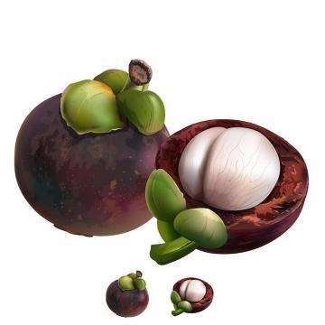 切开的山竹美味水果横切面png图片免抠矢量素材
