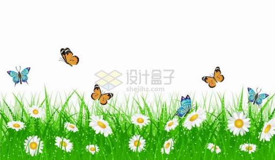 春天里的绿色草丛和盛开的雏菊白色花朵以及飞来飞去的蝴蝶png图片免抠矢量素材