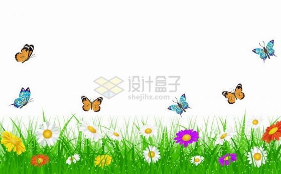春天草丛里的彩色雏菊花朵以及飞来飞去的蝴蝶png图片免抠矢量素材