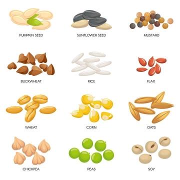 瓜子大米小麦玉米粒大麦粒等粮食种子颗粒图片免抠矢量图